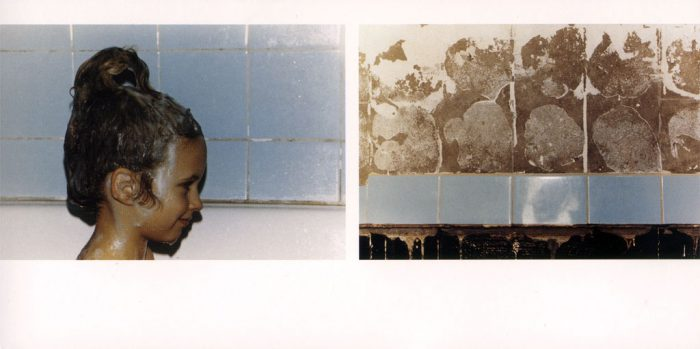 Cover Moll 31. Fotografien Wiebke Loeper